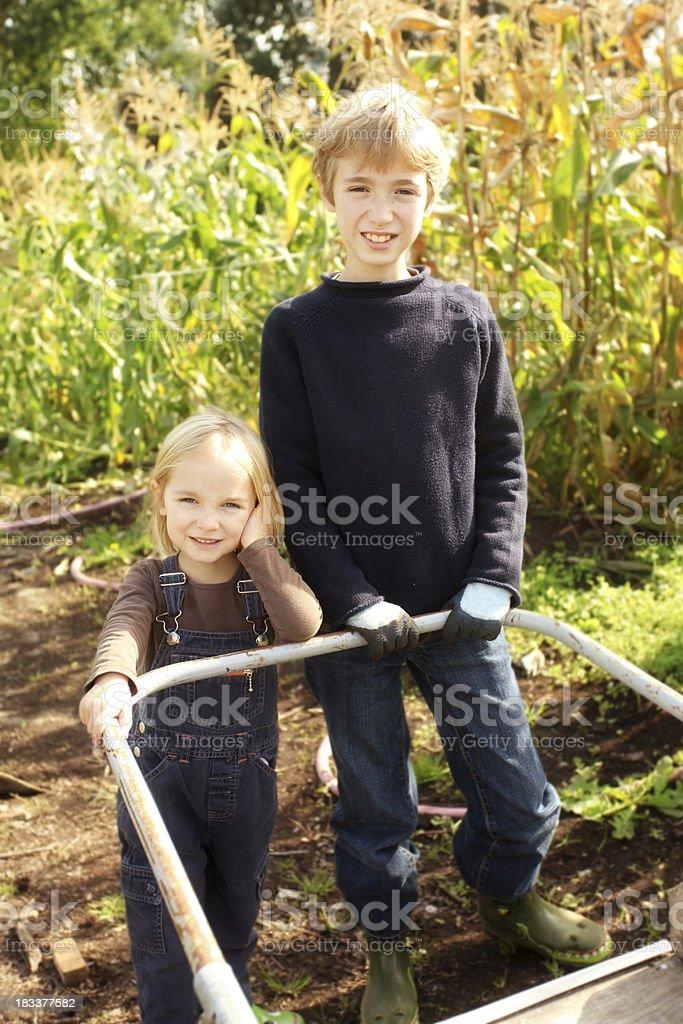Kids working on farm royalty-free stock photo