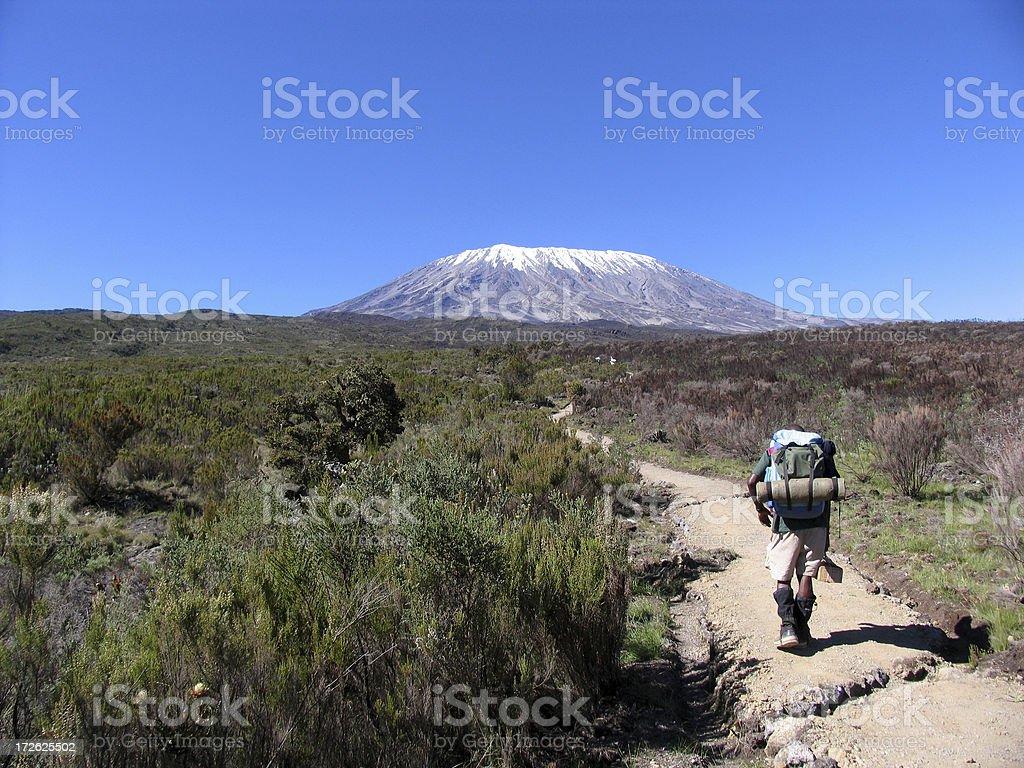 kilimanjaro guide stock photo