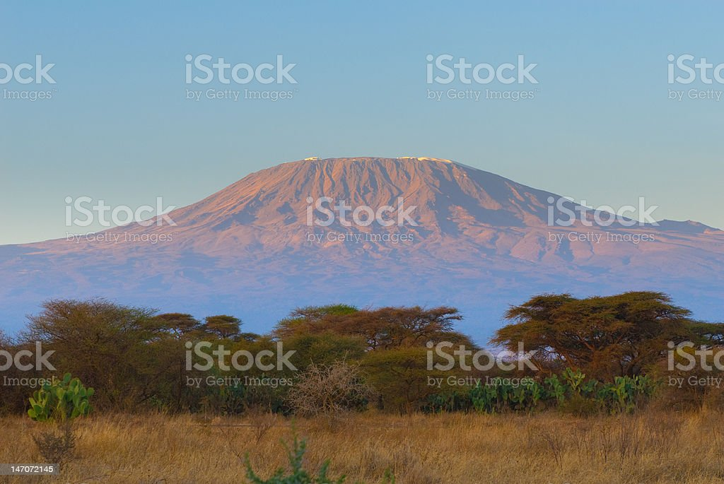kilimanjaro mountain at the sunrise stock photo