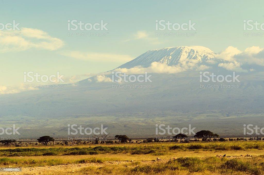 Kilimanjaro mountain stock photo