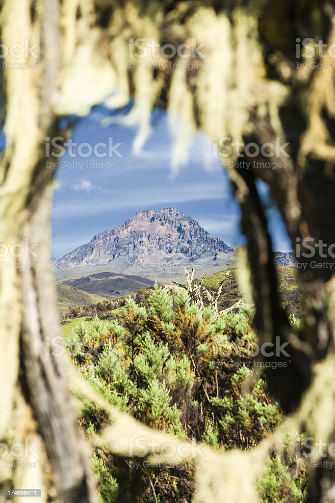 Kilimanjaro royalty-free stock photo