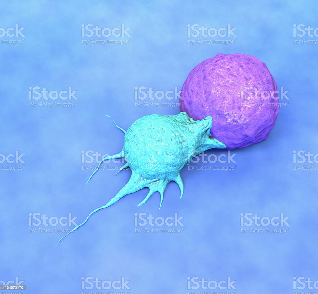 Killer Cell attacking Cancer stock photo