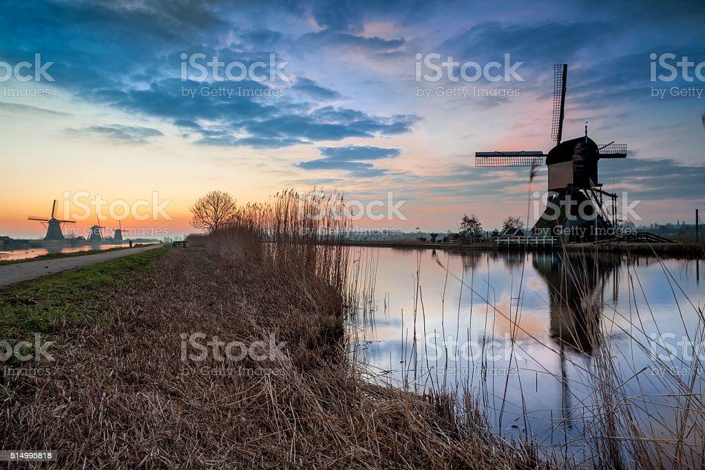Kinderdijk in holland stock photo