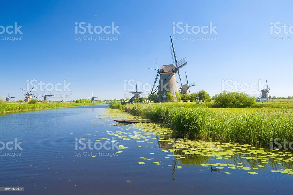 Kinderdijk windmills 1 stock photo