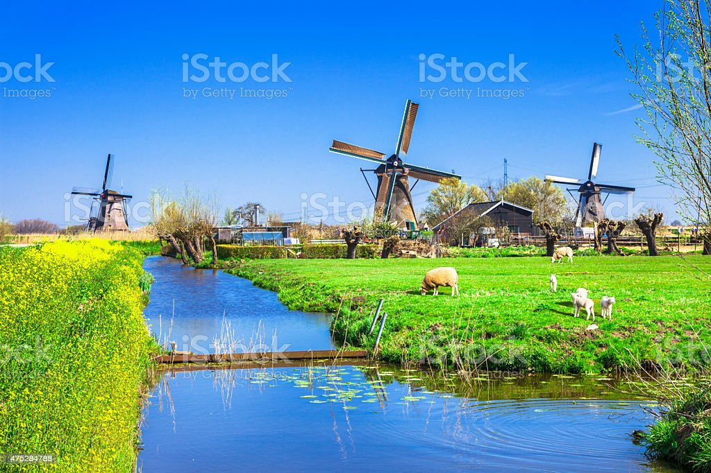 Kinderdijk,Netherlands. stock photo