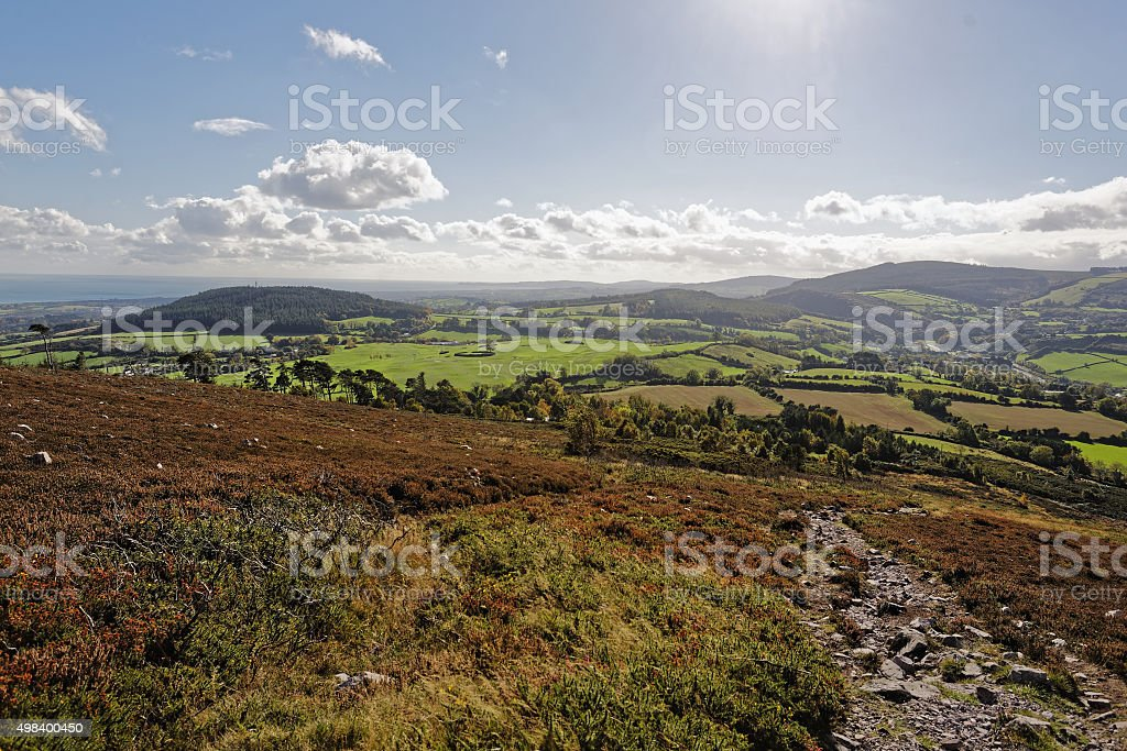 Kindlestown Woods royalty-free stock photo