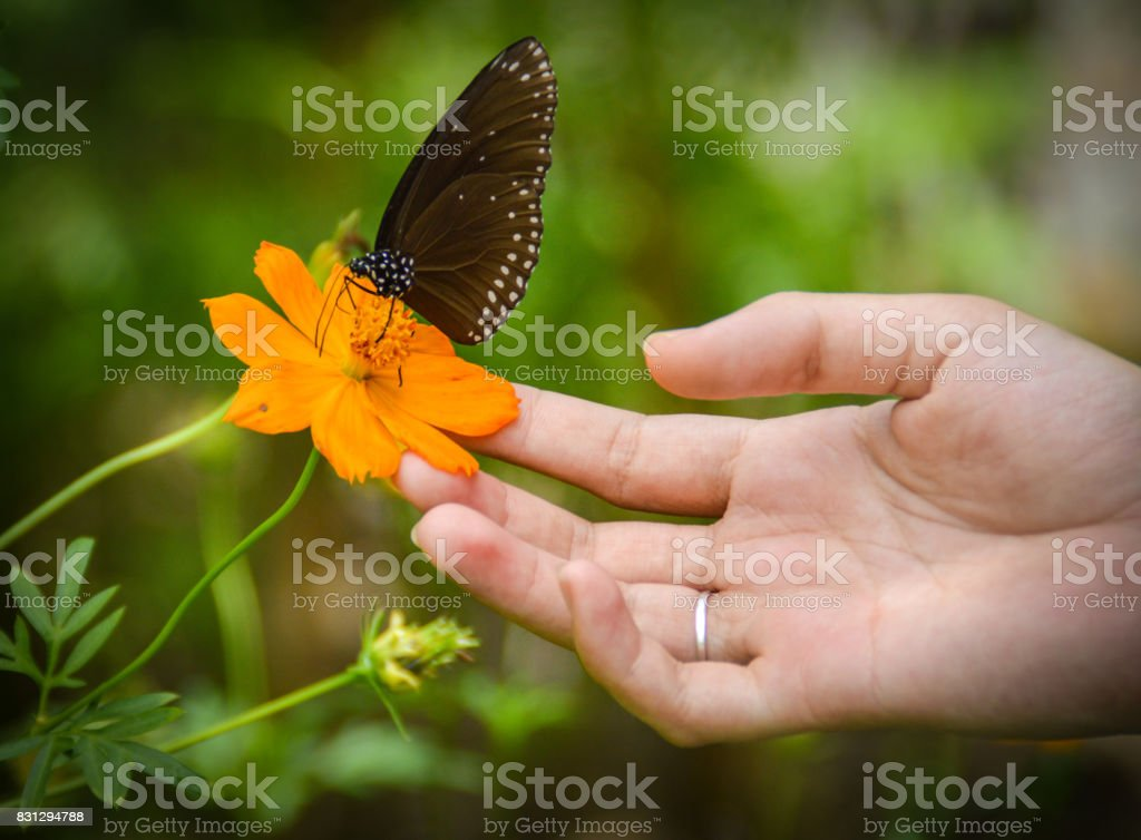 kindness is universal stock photo