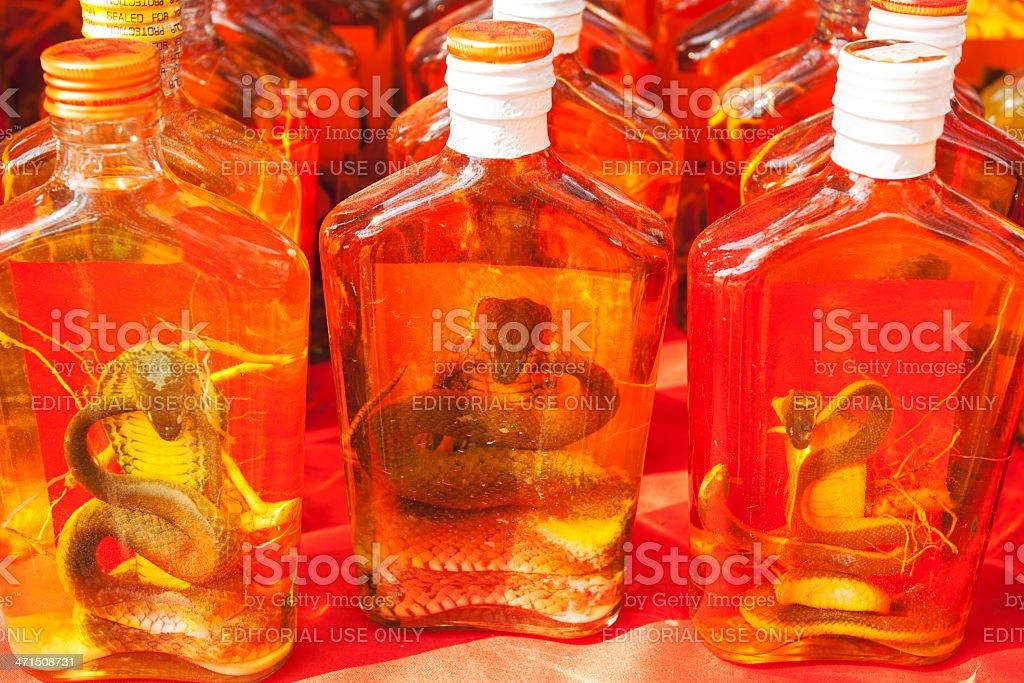 King cobra drink stock photo