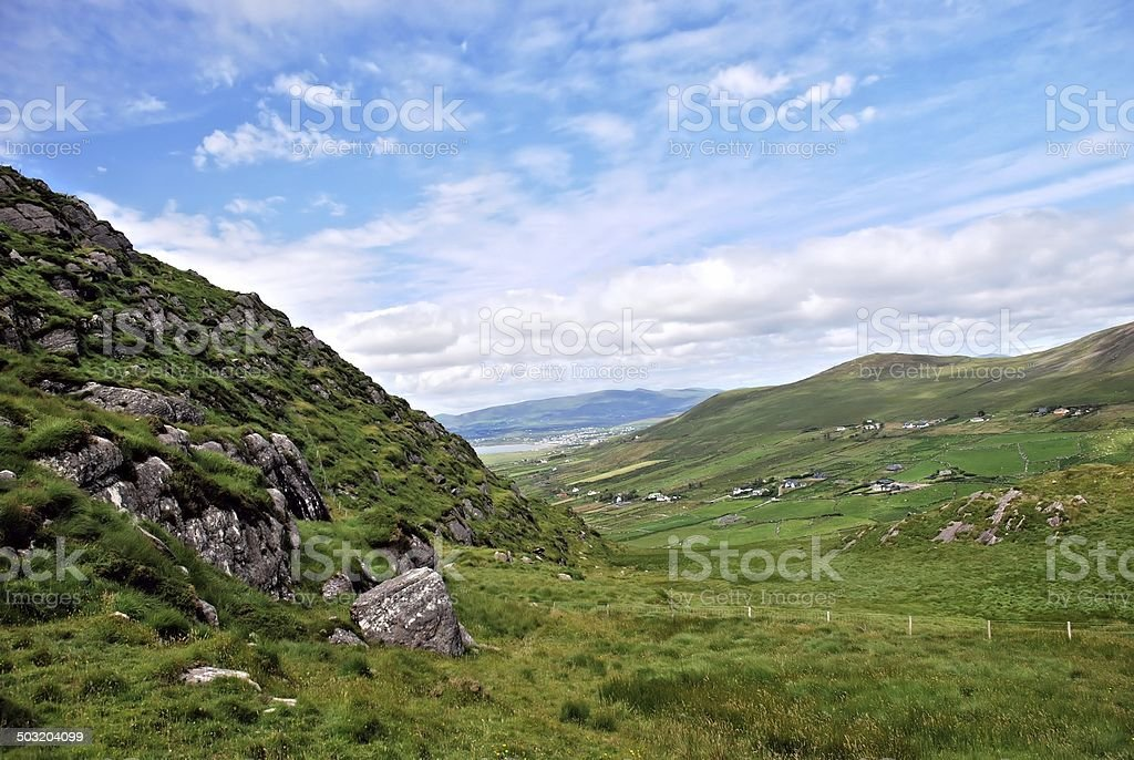 King of Kerry stock photo
