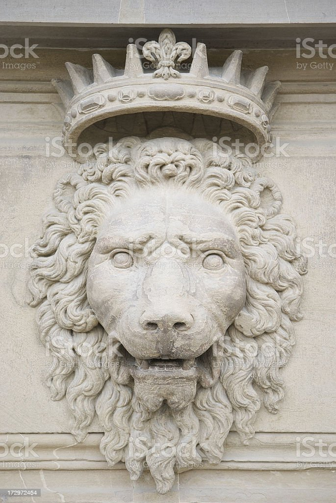 King of the Beasts royalty-free stock photo
