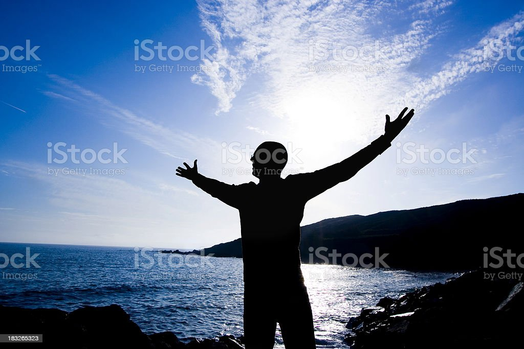 King of the World royalty-free stock photo