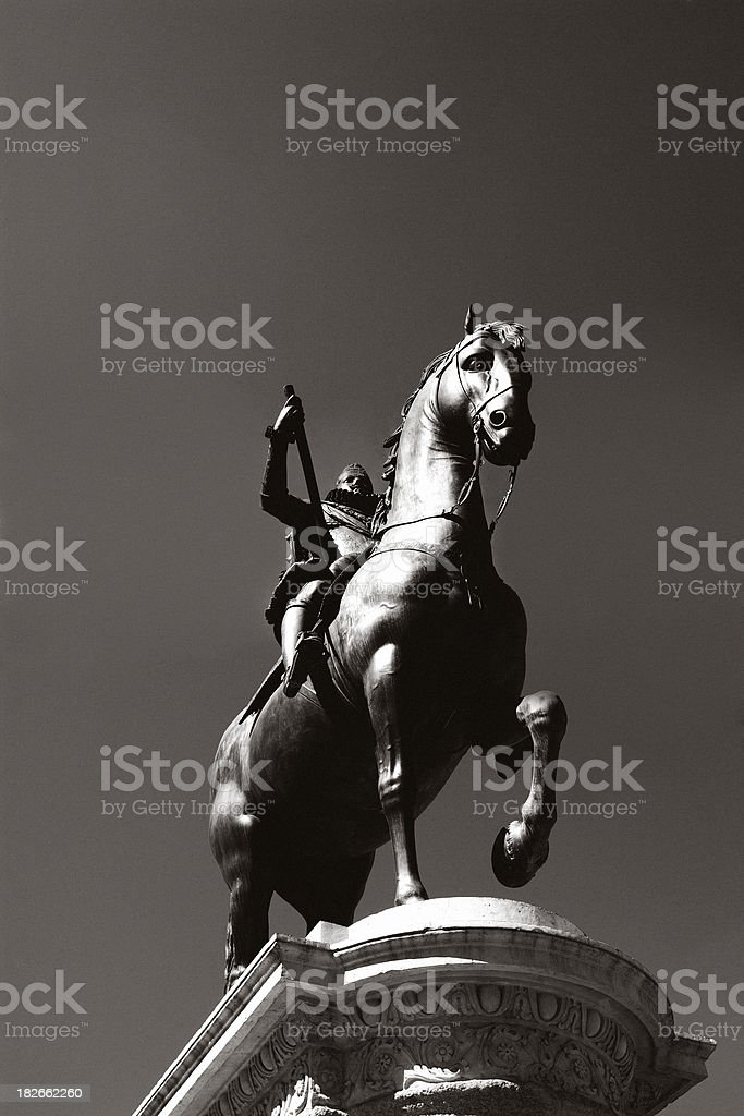 King royalty-free stock photo