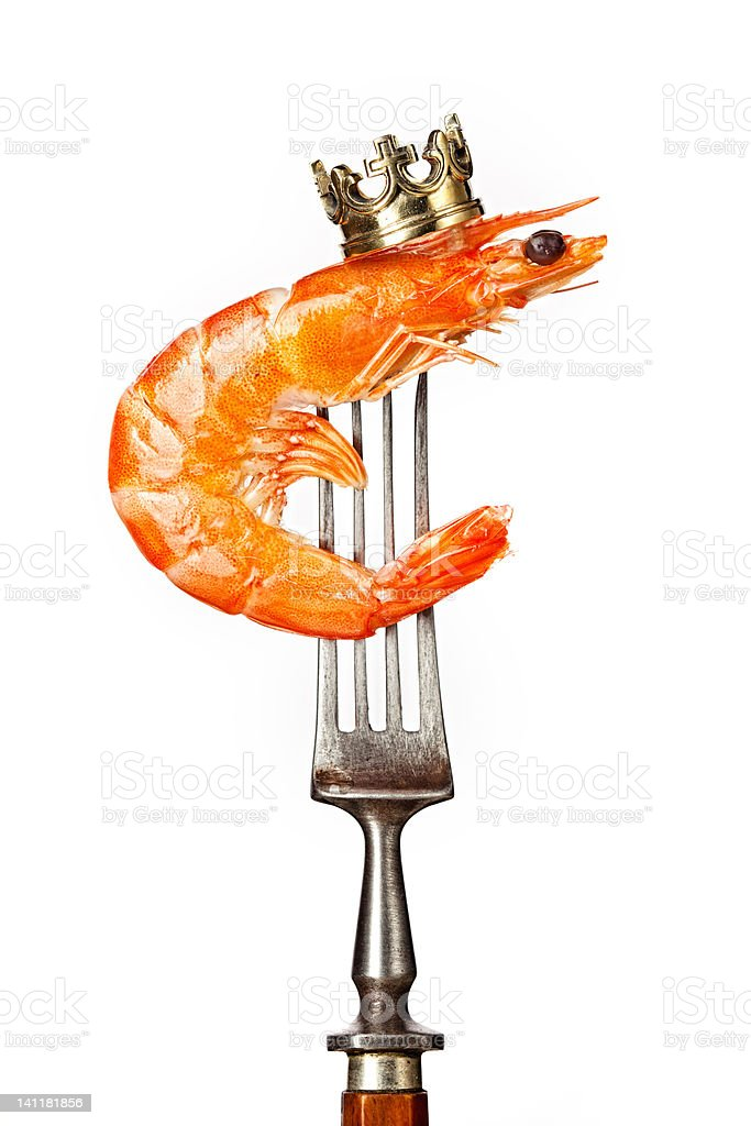 King prawn stock photo