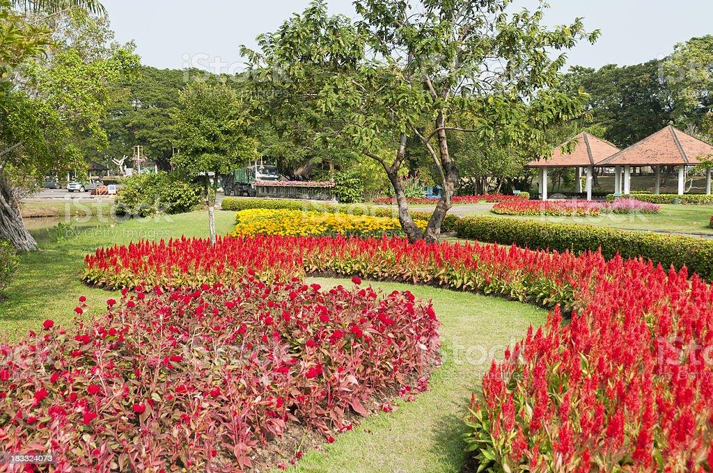 King Rama 9 Park stock photo