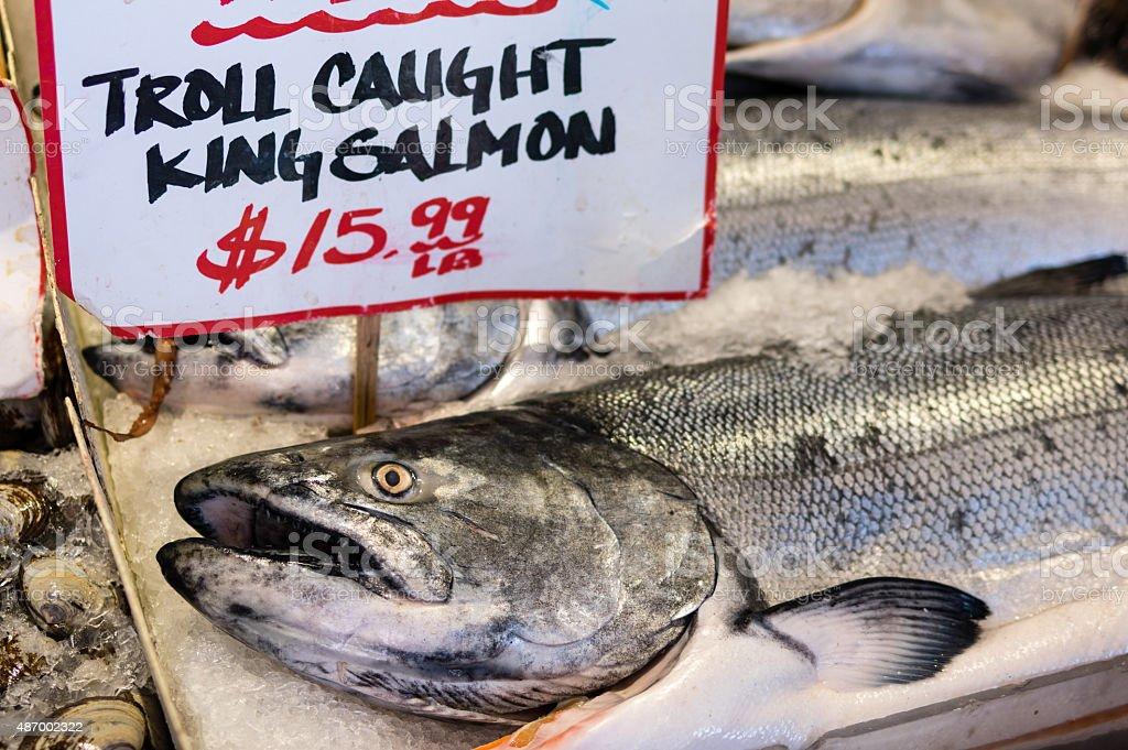 King Salmon On Ice stock photo
