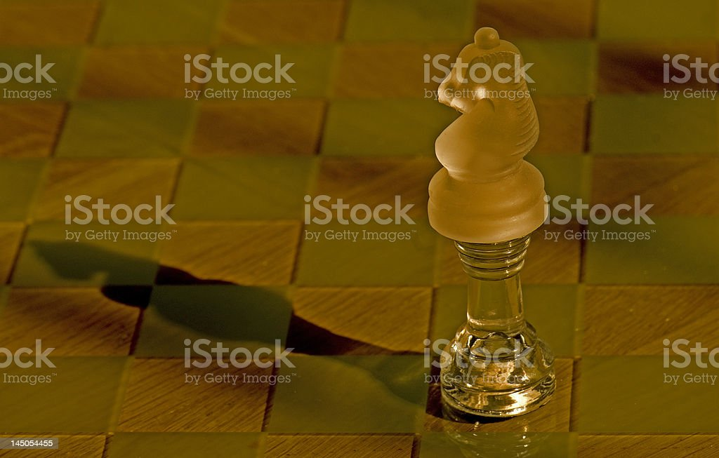 Kinght over Rook stock photo