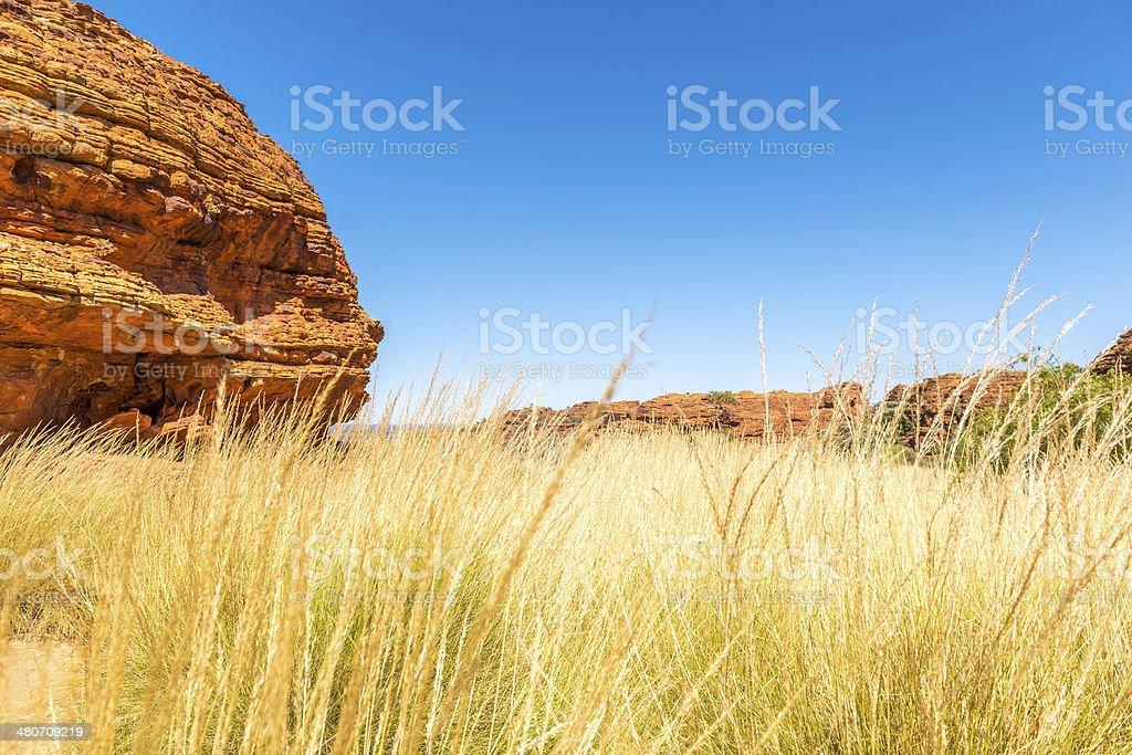 Kings Canyon, Central Australia stock photo