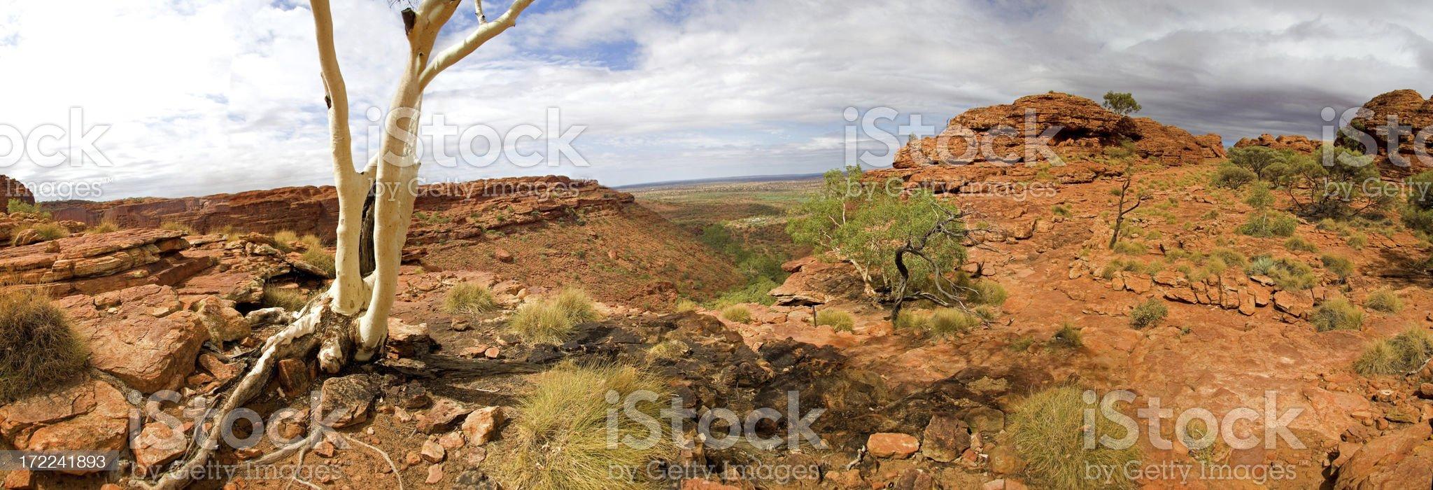 Kings Canyon National Park panorama XXL royalty-free stock photo