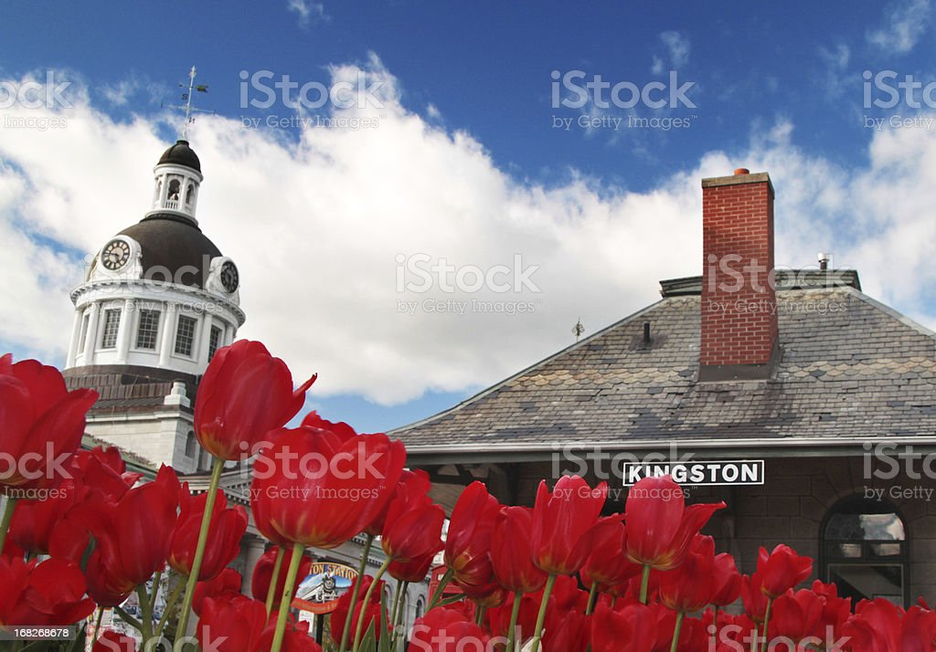 Kingston Downtown with Tulips and Train Station royalty-free stock photo