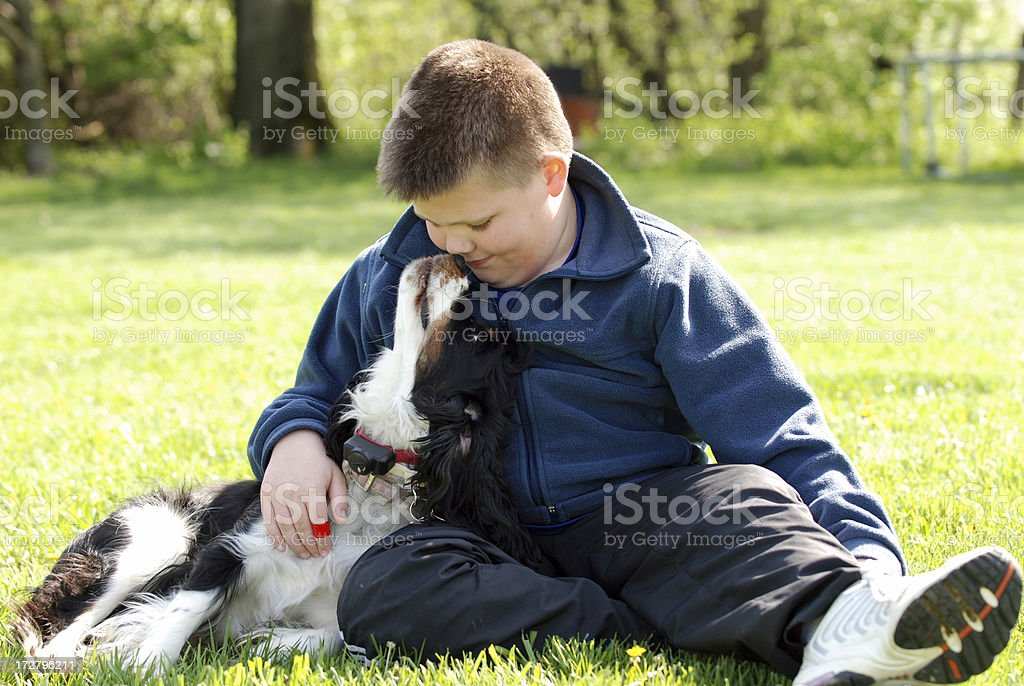 Kiss from my Dog stock photo