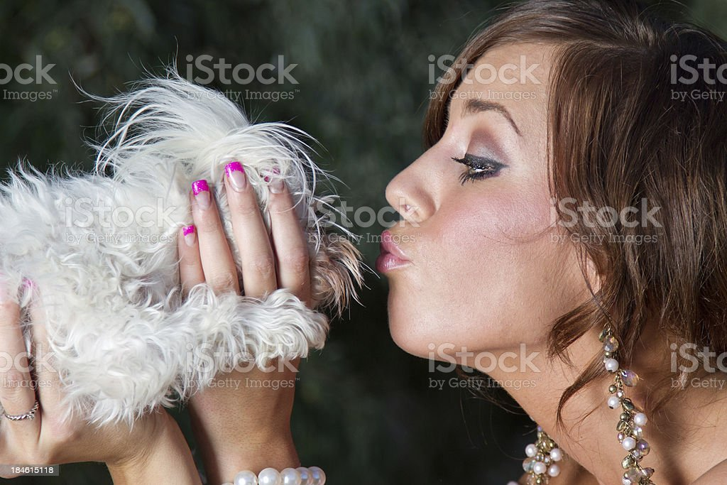 Kiss the Dog royalty-free stock photo