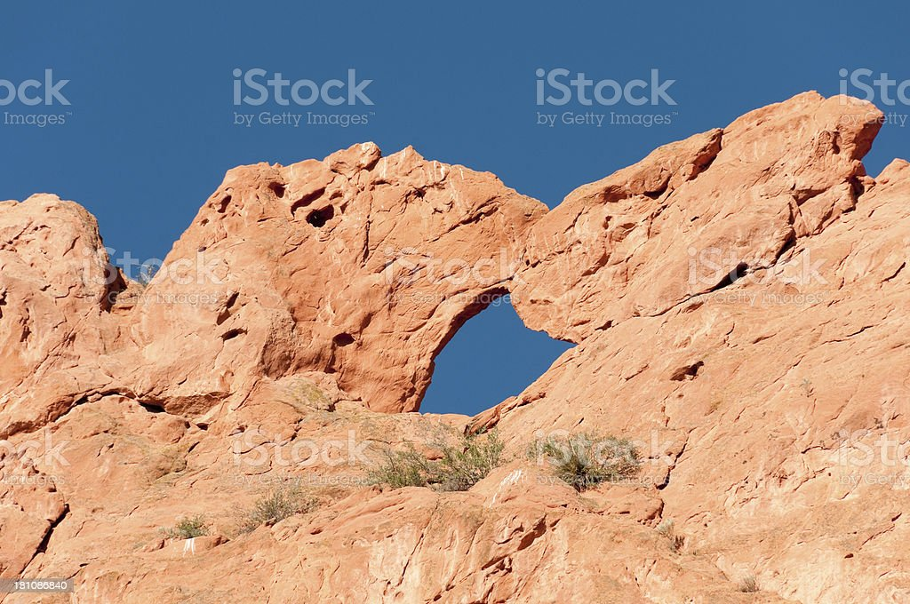 Kissing Camels royalty-free stock photo