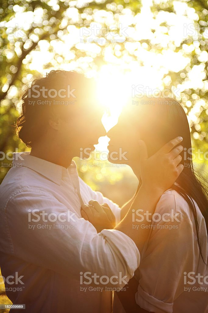 Kissing in the Sunlight stock photo