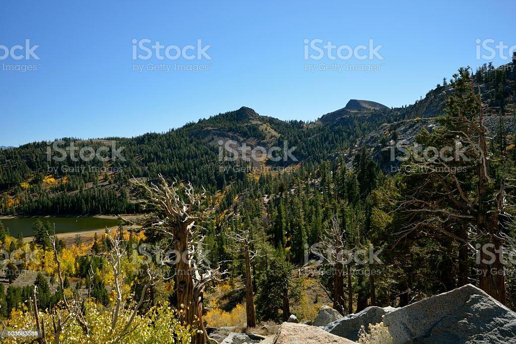 Kit Carson Pass - Hope valley California stock photo