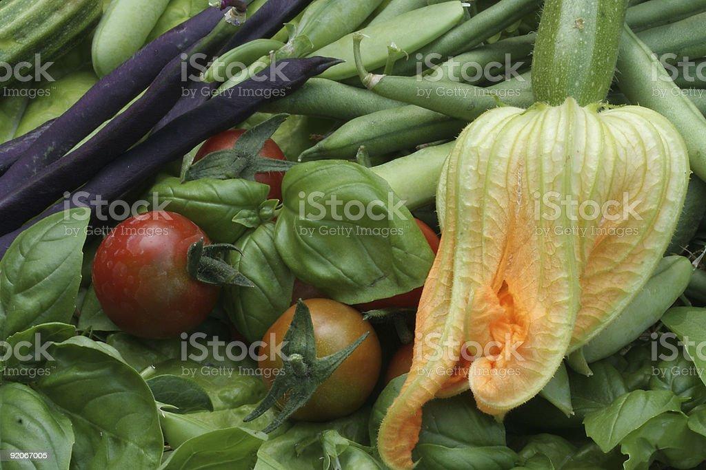 kitchen garden harvest royalty-free stock photo