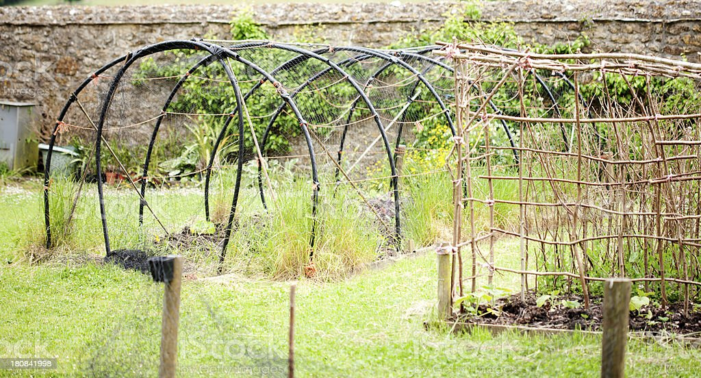 Kitchen garden stock photo