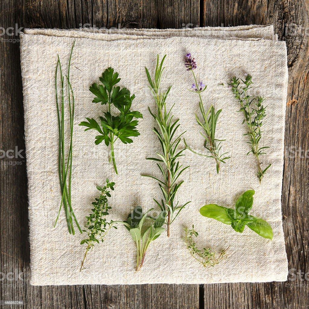 Kitchen herbs still life stock photo