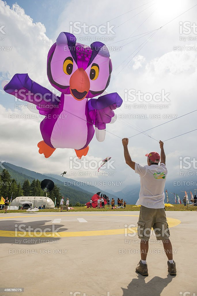 Kite Flying in a Cloudy Sky royalty-free stock photo