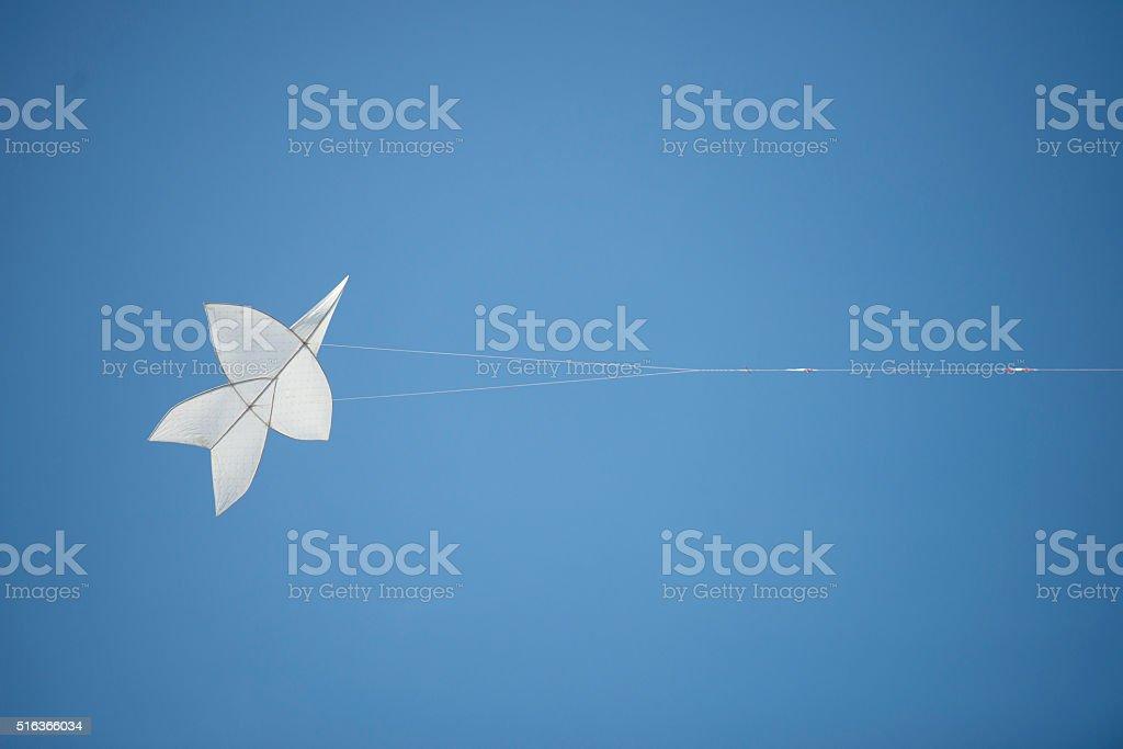 Kite on the Sky stock photo