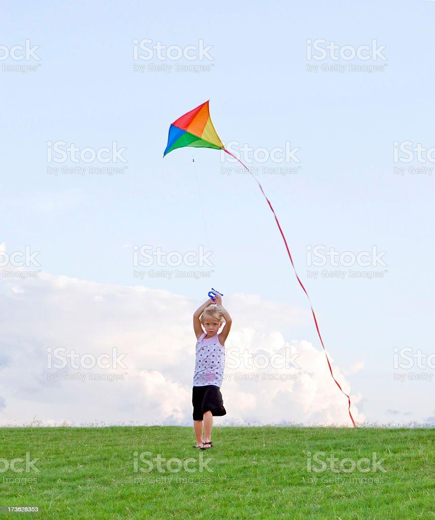 Kite Lizenzfreies stock-foto
