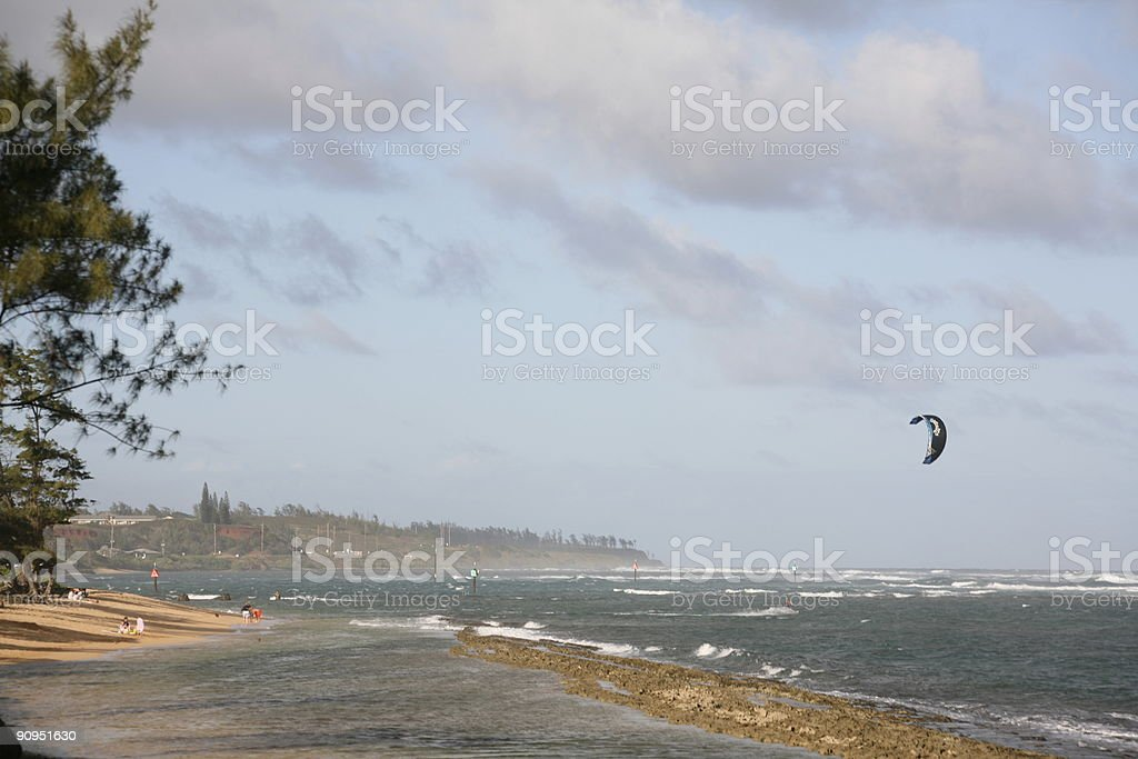 Kiteboarder going out into the surf, tree & reef foreground stock photo
