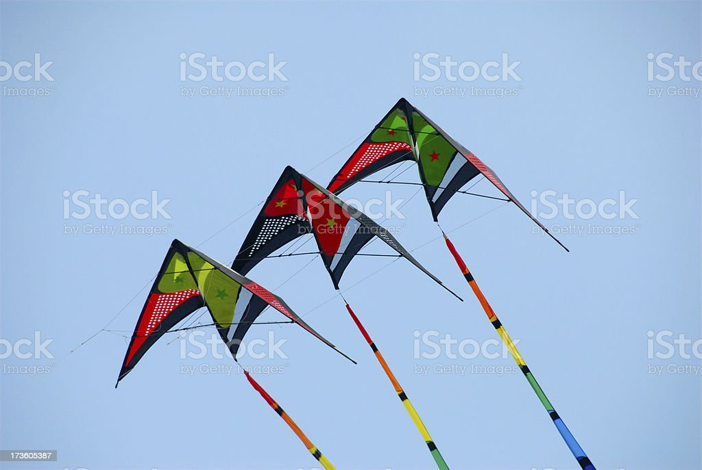 Kites in the sky royalty-free stock photo