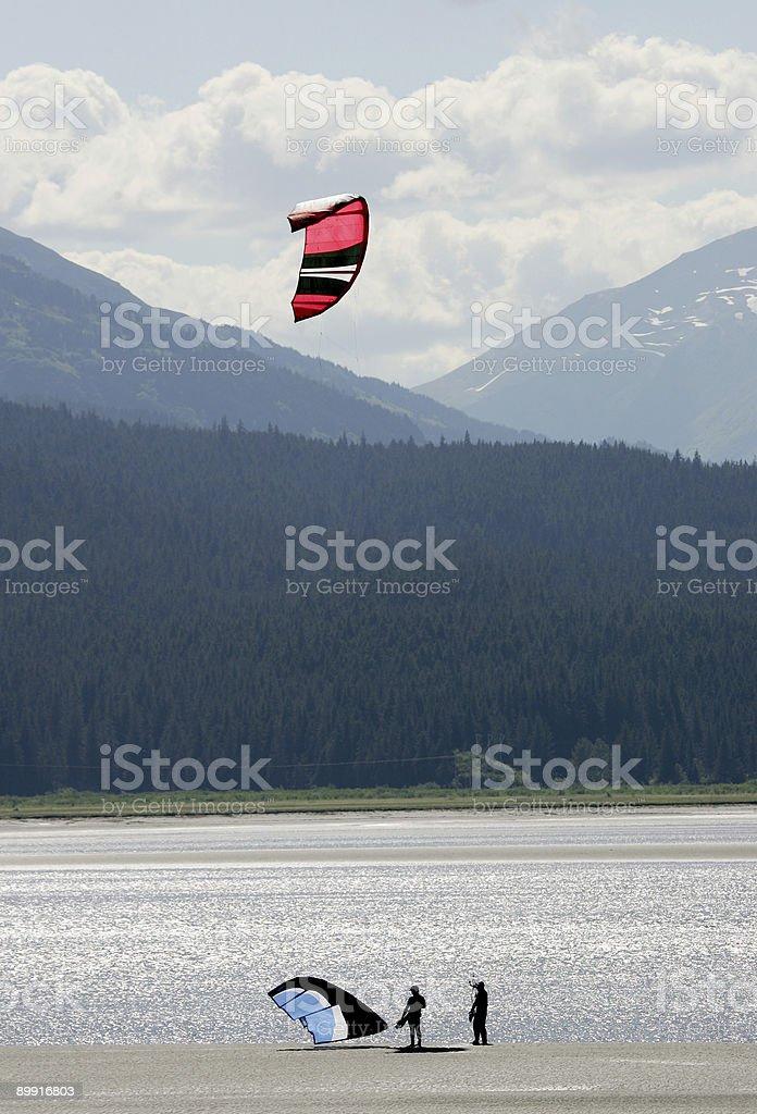 Kites royalty-free stock photo