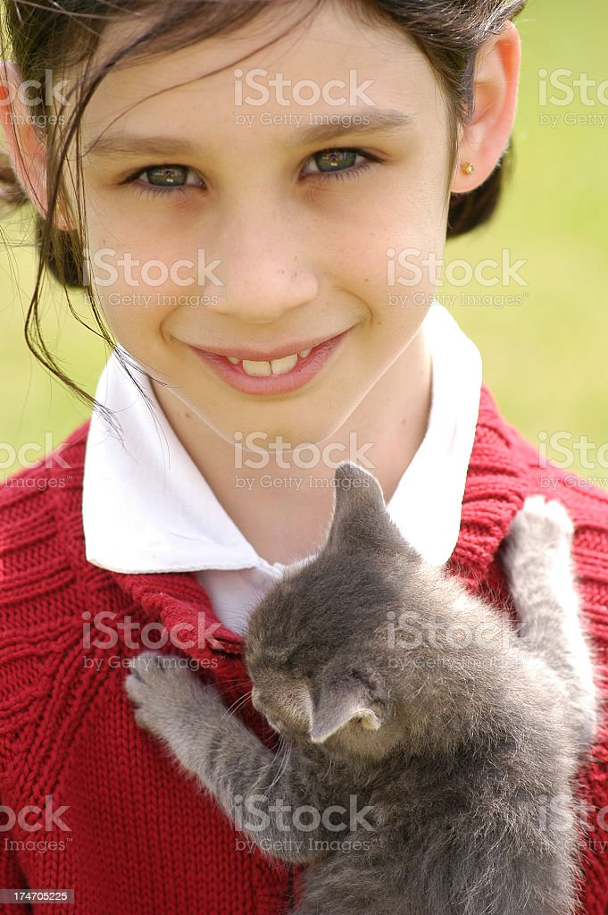 Kitten and little girl stock photo