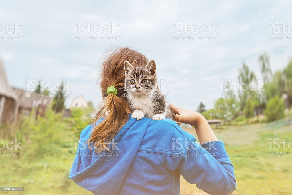 Kitten sitting on shoulder of little girl stock photo