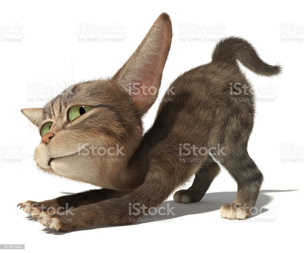 Kitten stretches against white background stock photo