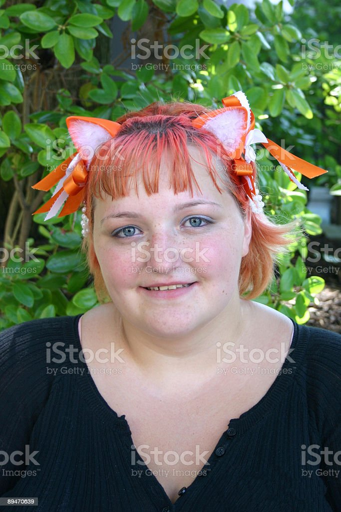 Kitty Cat Ears stock photo