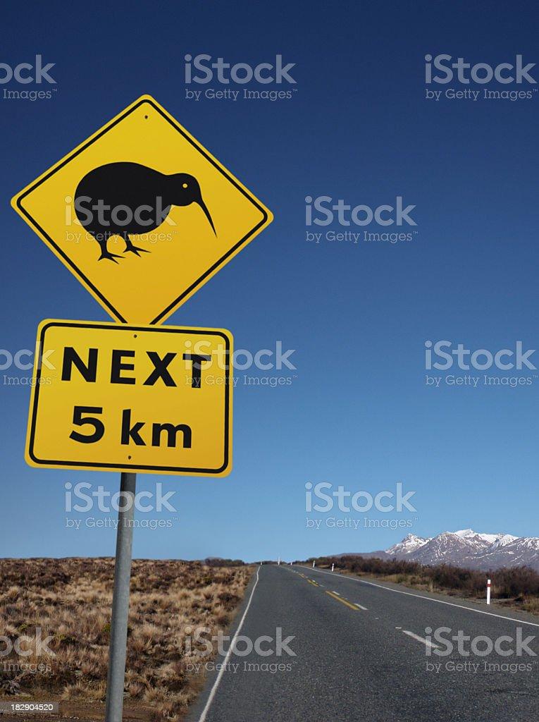Kiwi Bird on the Road royalty-free stock photo