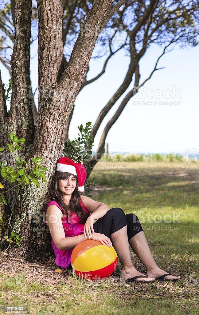 Kiwi Christmas stock photo