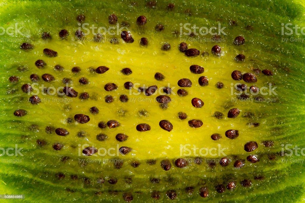Kiwi Fruit Close Up stock photo
