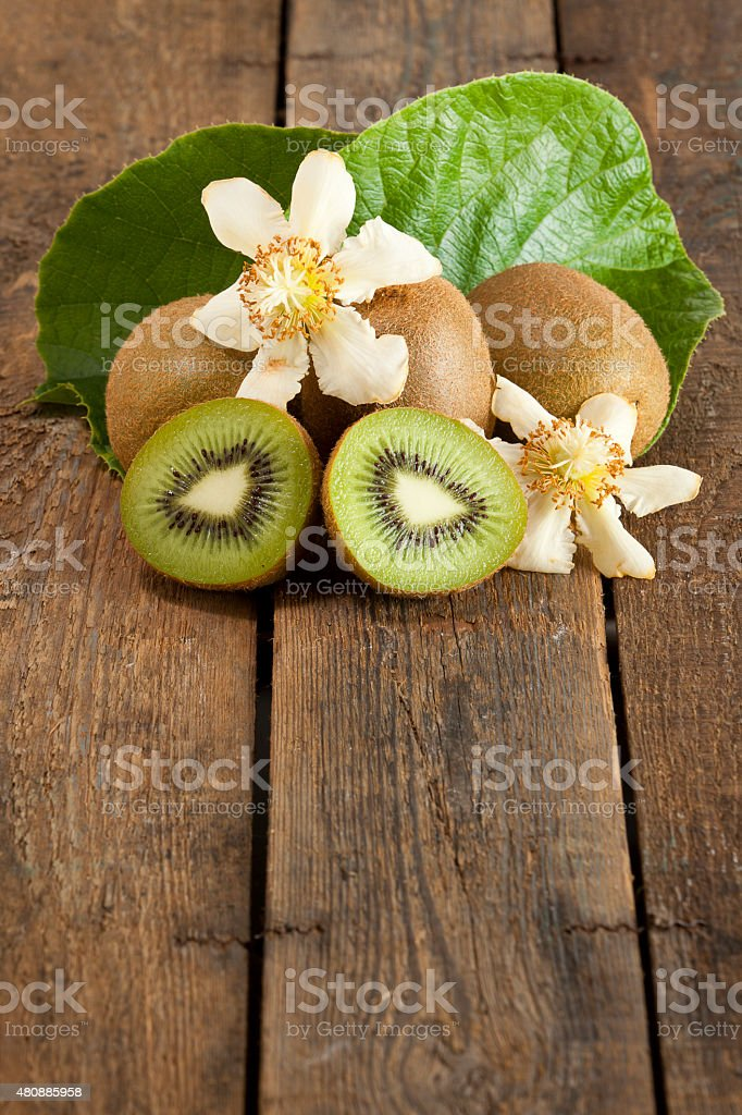Kiwi fruits, leaf and blossoms stock photo