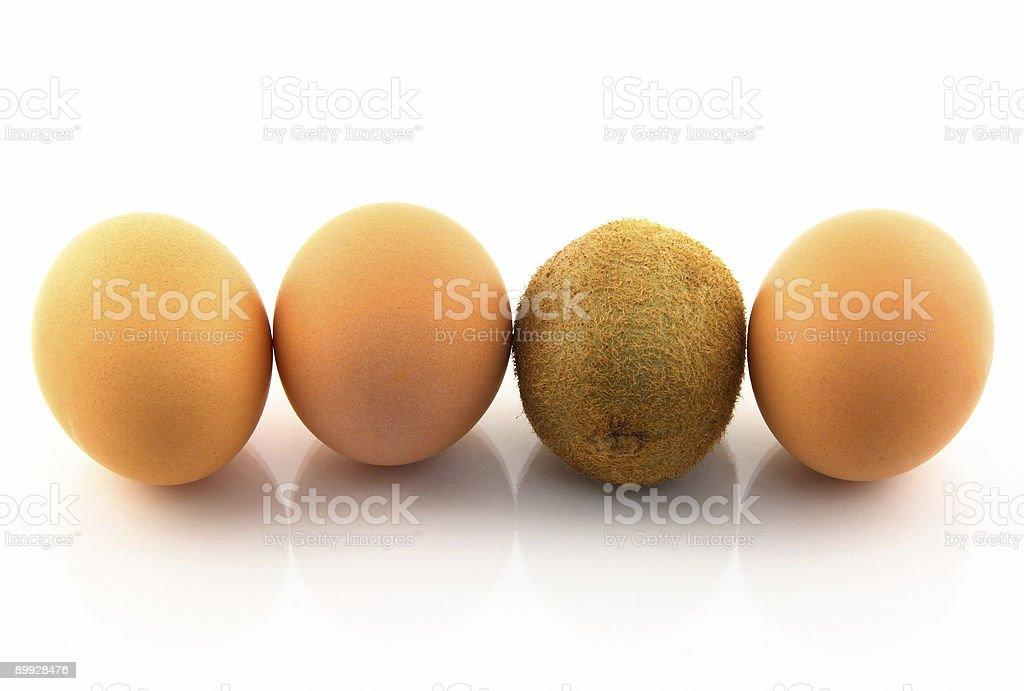 Kiwi, pretending to be an egg royalty-free stock photo