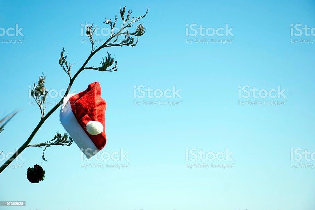 Kiwiana Christmas Themed Image stock photo
