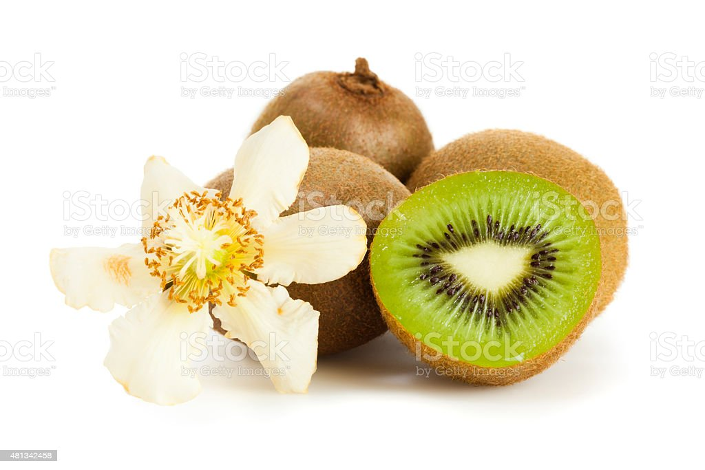 Kiwis with blossom isolated on white stock photo