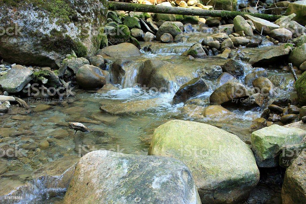 klares Wasser stock photo