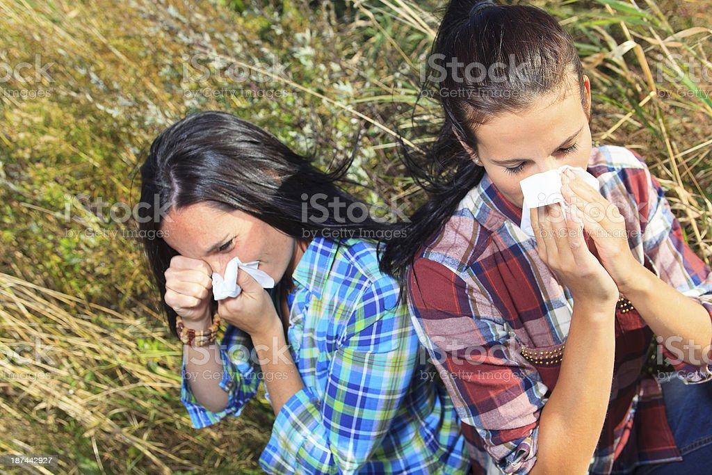 Kleenex and Allergy royalty-free stock photo